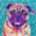 Pug, Pug dog paintings, Pug portraits, Custom pet paintings, Evei Art, Eve Izzett