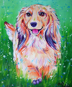 Long haired dacshund, pet portrait, custom pet painting, Evei Art, Eve Izzett