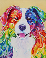 Dog, border collie, Painting, Pet portraits, Evei Art, Eve Izzett