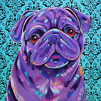 Pug, Black pug, Custom Pug painting, Pet portraits Australia, Evei Art, Eve Izzett