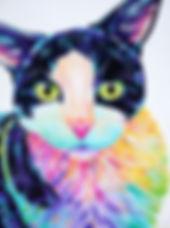 Colourful cat painting, Cat art, Pet art, Pet portraits from photos in Australia, Evei Art, Eve Izzett