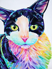 Colourful cat painting, Cat art, Pet art, Pet portraits from photos in Australia, Evei Art, Eve Izzett