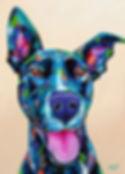Colorful dog paiting, Pet portraits from photos, Pet portraits Australia, Evei Art, Eve Izzett