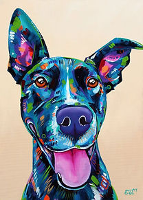 Colorful dog paiting, Pet portraits from photos, Pet portraits Australia, Evei Art, Eve Izzett