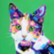 Abstract Cat painting, Colourful pet portraits, Animal Art, Australian Artists, Evei Art, Eve Izzett