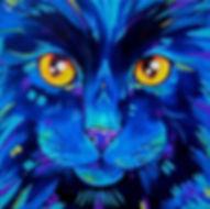 Black cat art, Abstract Cat art, Colourful pet portraits, Evei Art, Eve Izzett