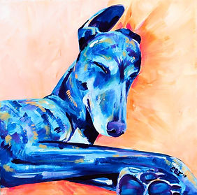 Greyhound art, Pet paintings, Pet portraits from photo's in Australia, Evei Art, Eve Izzett
