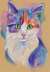 Pastel Cat drawing, Cat portrait, Cat portraits online, Evei Art, Eve Izzett