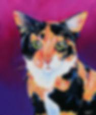 Cat, Cat painting, Cat art, Pet portraits, Australian Artists, Evei Art, Eve Izzett