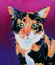 Cat, Cat painting, Cat art, Pet portraits, Australian Artists, Evei Art, Eve Izzett