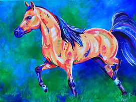 Miniature horse, Custom horse paintings, Pet Portraits, Colourful Pet portraits, Evei Art, Eve Izzett