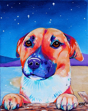 Dog on the beach, Stars, Pet art, Evei Art, Eve Izzett