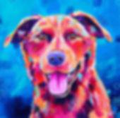 Kelpie dog, Dog art, Dog painting, Custom pet portrait, Evei Art, Eve Izzett