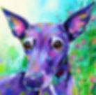 Greyhound, Dog, Dog Portraits, Animal paintings, Custom pet portraits, Evei Art, Eve Izzett