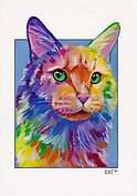 Colourful pet paintings, Custom Pet portraits, Cat painting, Evei Art, Eve Izzett