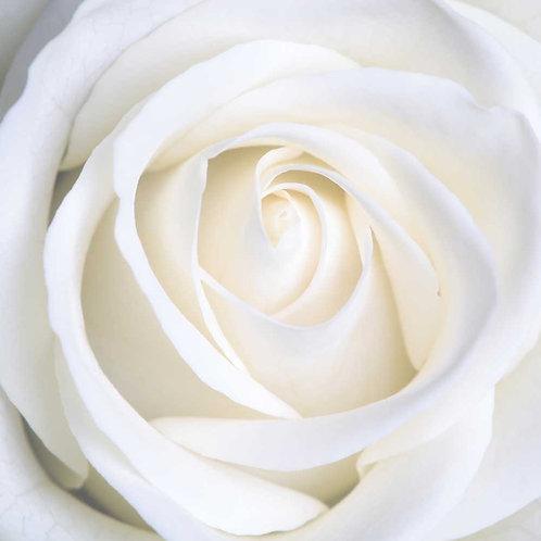 Эфирное масло Роза, в фасовке 100 мл.
