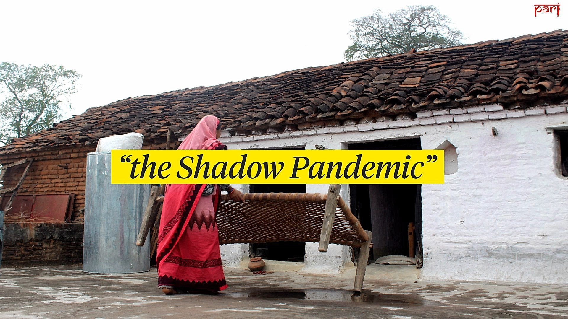 Explaining The Shadow Pandemic