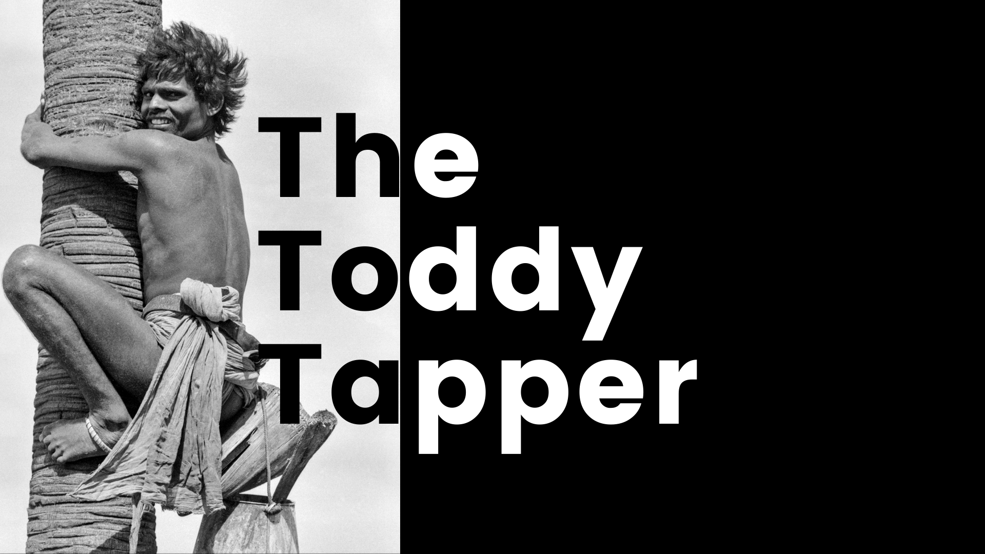 The Toddy Tapper