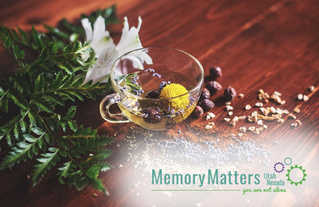Evaluating Alternative Treatments for Alzheimer's and Dementia