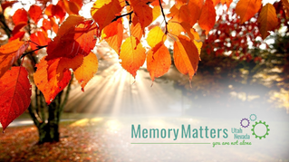 5 Ways to Improve Memory and Cognitive Function During the Autumn Season