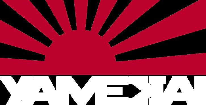 Flag Logo_white.png