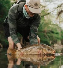 Big Fish & Fun Found Here