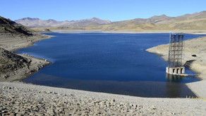 Can markets be used to protect the environment? The case of Chilean water markets