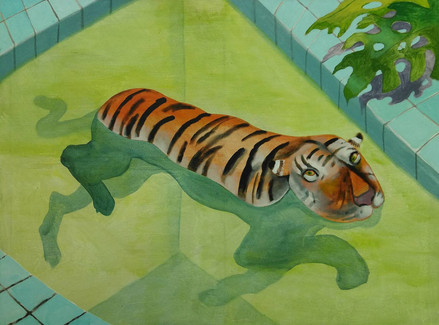 chris_akordalitis_pool_tiger