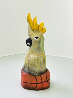 chris_akordalitis_cockatoo_on_a_basketball