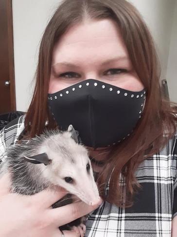 Kelleyopossum.jpg