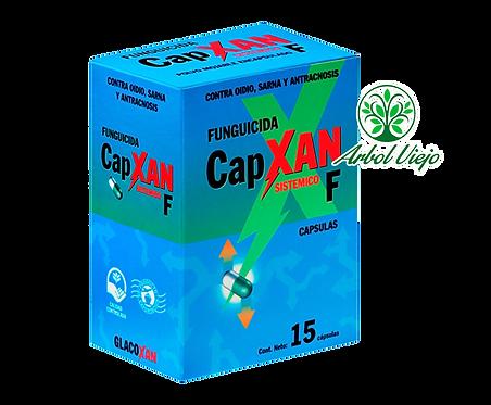 GLACOXAN CAPXAN 15 CAPSULAS