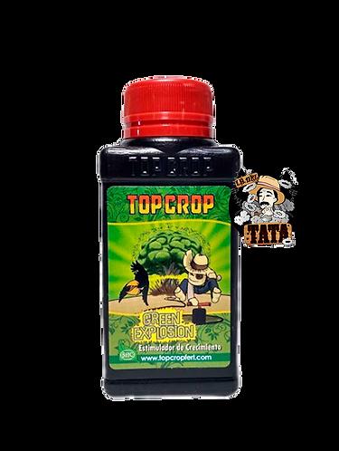 TOP GREEN 100ML EXPLOSION TOP CROP