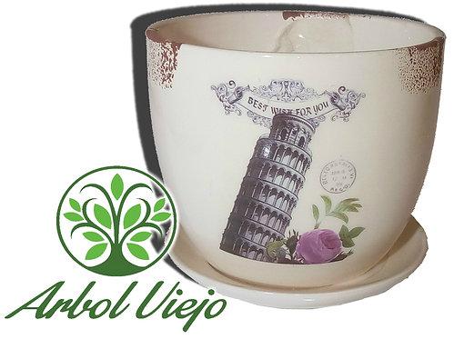 Maceta Ceramica Bols Con Plato Diseños - ARBOL VIEJO