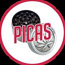 BOTON_picas.png