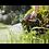Thumbnail: BERTA PISTOLA RIEGO 1 SALIDA REGULABLE PROFESIONAL