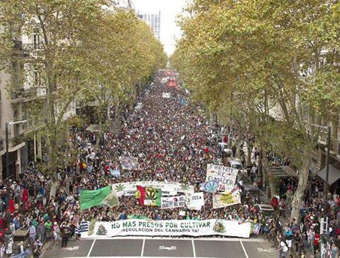 Marcha Mundial de la Marihuana!!!