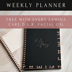 Lamina Care Free Planner.jpg
