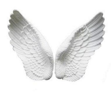 Angel Butterfly.jpg