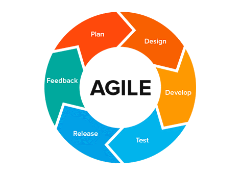 SPI and Agile Software Development
