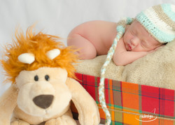 Newborn -Henrique