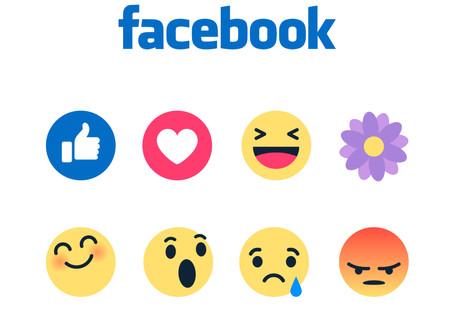 Besuchen Sie uns auch auf Facebook und Instagram