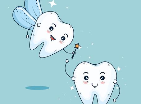 Wir suchen eine Zahnfee
