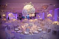 White Reception
