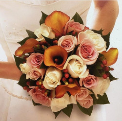 Compact Bridal flowers