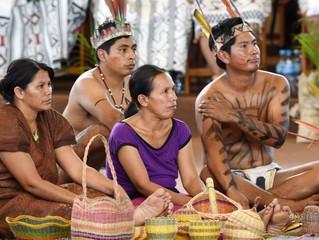 Sínodo 2019: Em comunhão com os povos nativos, plasmar uma Igreja com rosto amazônico