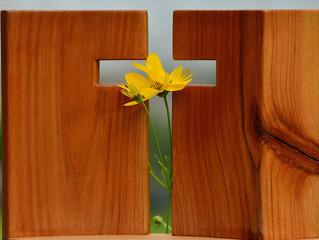 O domingo - Dia da Ressurreição e da Eucaristia