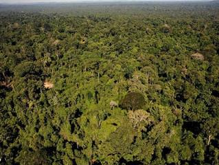 Decreto anti-Amazônia suspenso, mas luta da Igreja continua