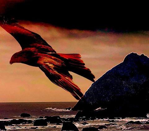 #thecryptids#thunderbird#darkcalifornia.
