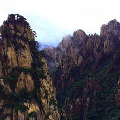 #china#huangshan#mountainfog#morningmagi