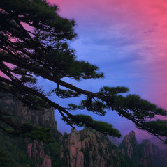 #china#huangshan#yellowmountain#inspirat